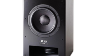 Loa M&K Sound X12